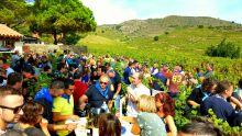 Banyuls - Collioure