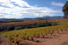 Séminaire Roussillon