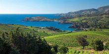 séminaire Banyuls - Collioure